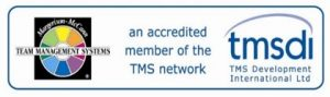 TMSDI Team Management System logo
